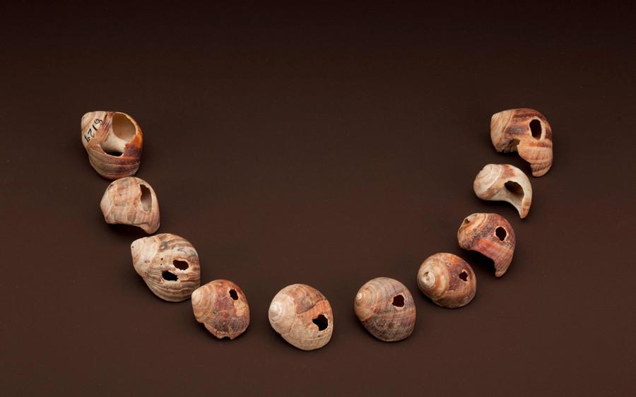 Perle Cromagnon