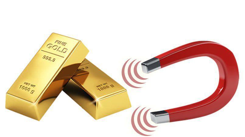 Test Oro Magnete